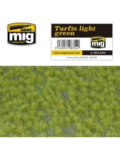 AMIG-8355 - Pastos verde medio